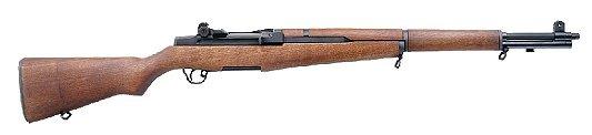 Springfield Armory M1A M19106