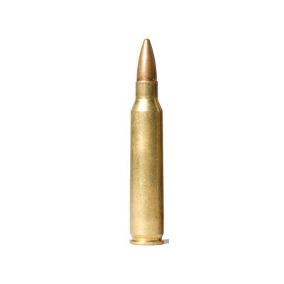 .223 Remington (5.56x45mm NATO)