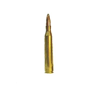 .25 Winchester Super Short Magnum (WSSM)