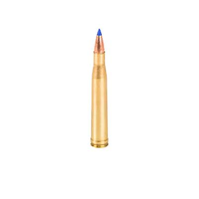 .300 H&H Magnum