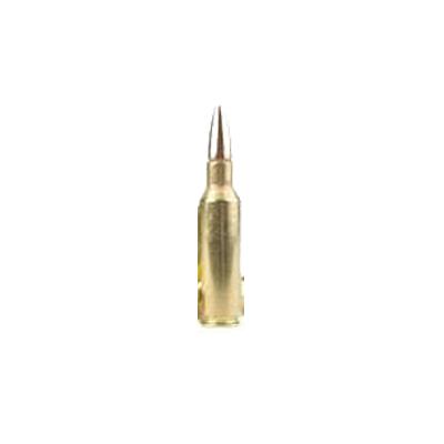 .300 Remington Short Action Ultra Magnum