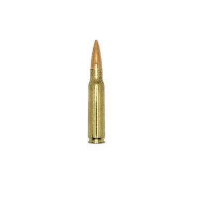 .308 Winchester (7.62mm NATO)